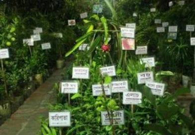 কেশবপুরে চারদিন ব্যাপী ফলদ বৃক্ষমেলার উদ্বোধন